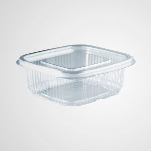 Rectangular Clear Crystal Salad Container